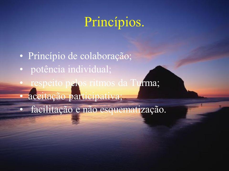 Princípios. Princípio de colaboração; potência individual;