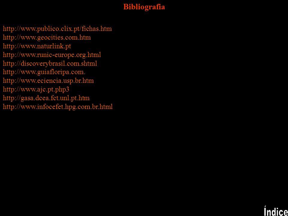 Índice Bibliografia http://www.publico.clix.pt/fichas.htm
