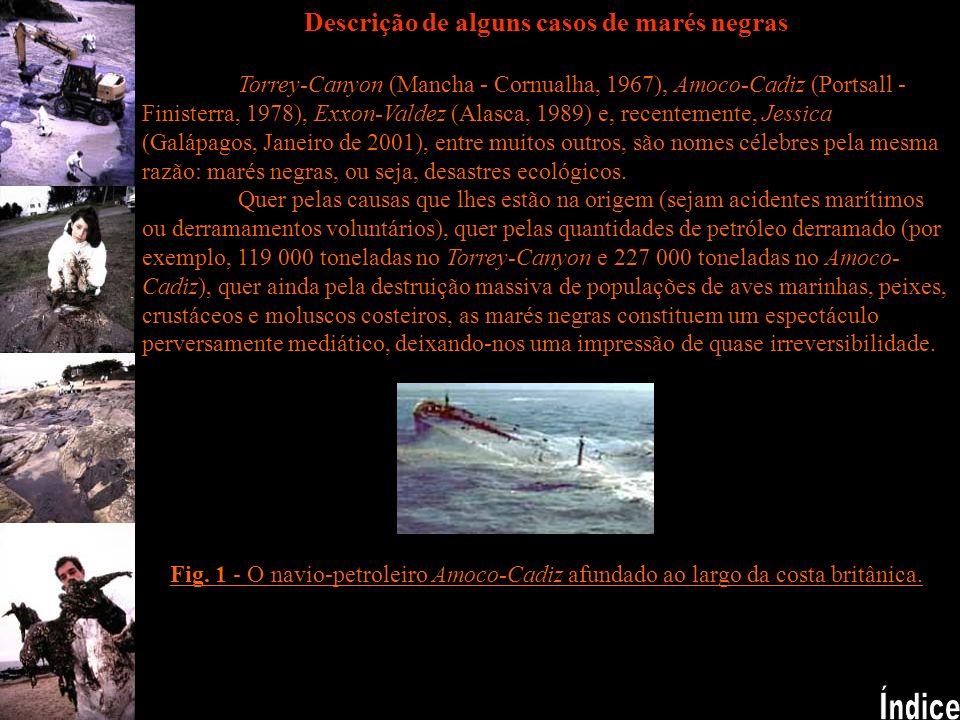 Descrição de alguns casos de marés negras