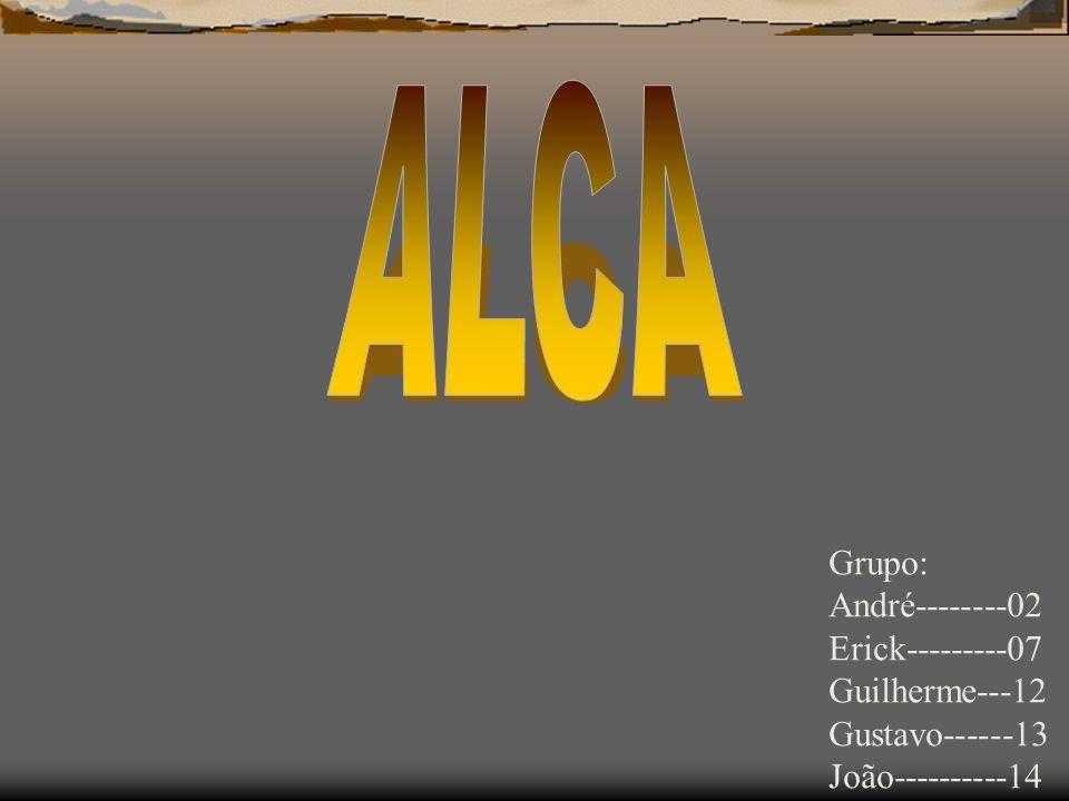 ALCA Grupo: André--------02 Erick---------07 Guilherme---12