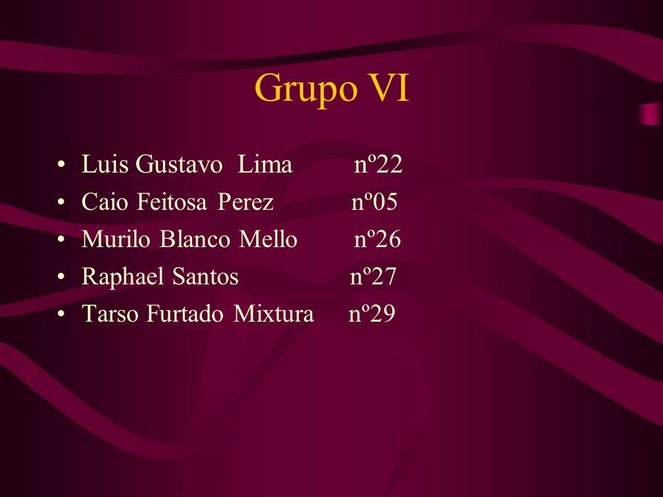 Grupo VI Luis Gustavo Lima nº22 Caio Feitosa Perez nº05