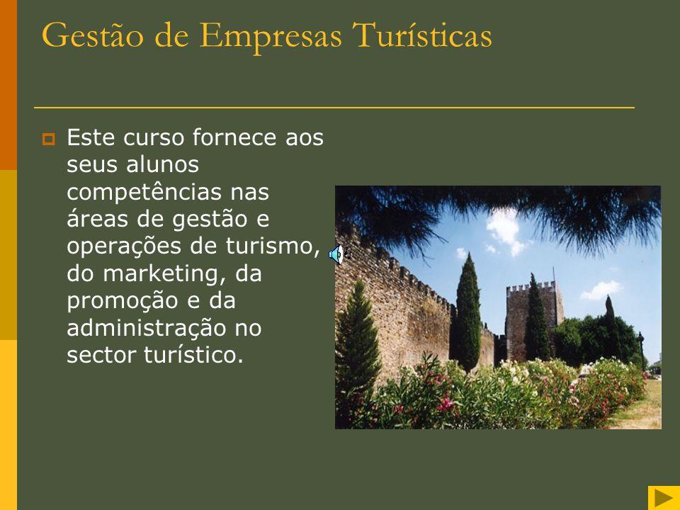 Gestão de Empresas Turísticas