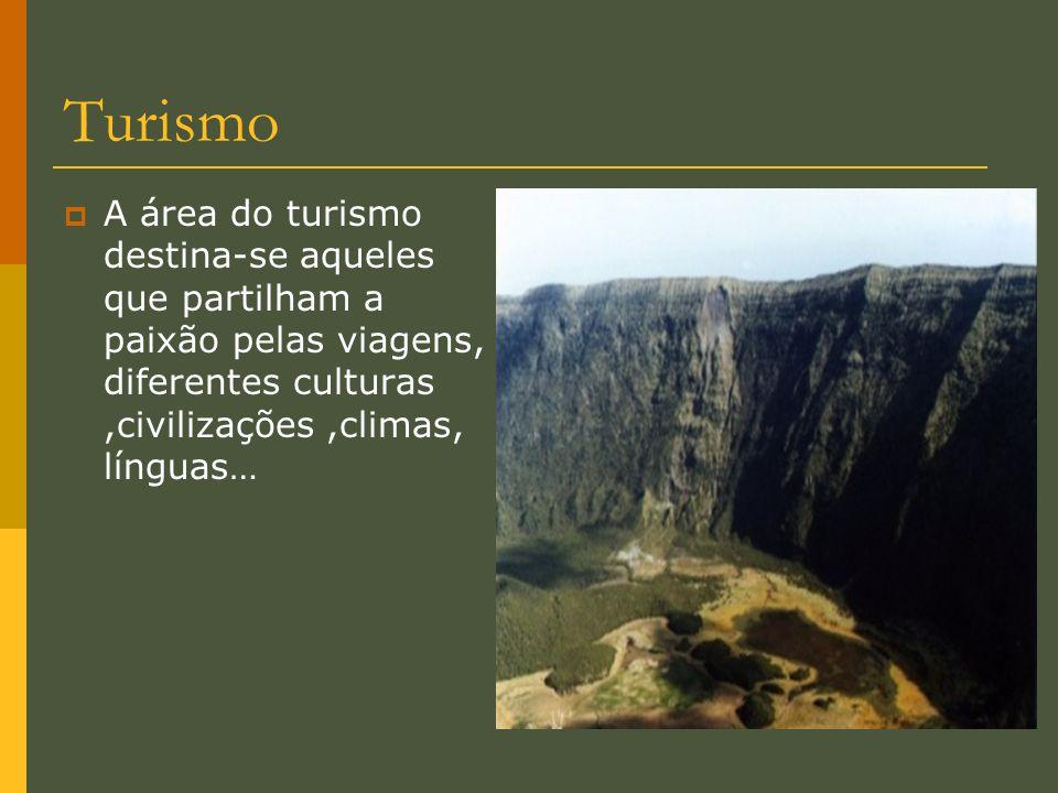 Turismo A área do turismo destina-se aqueles que partilham a paixão pelas viagens, diferentes culturas ,civilizações ,climas, línguas…