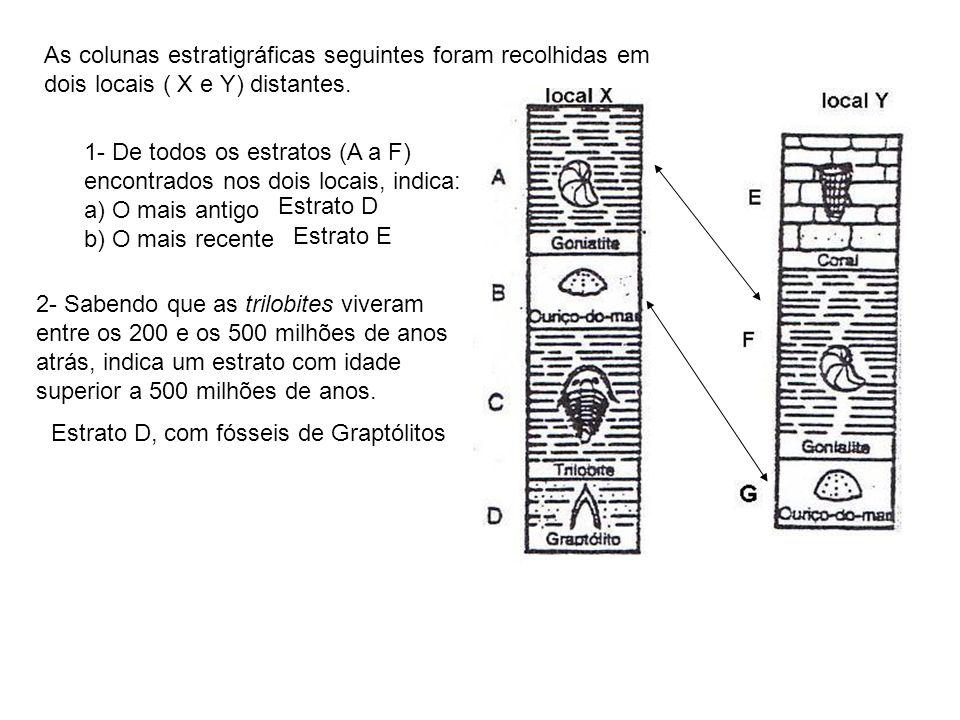 As colunas estratigráficas seguintes foram recolhidas em dois locais ( X e Y) distantes.