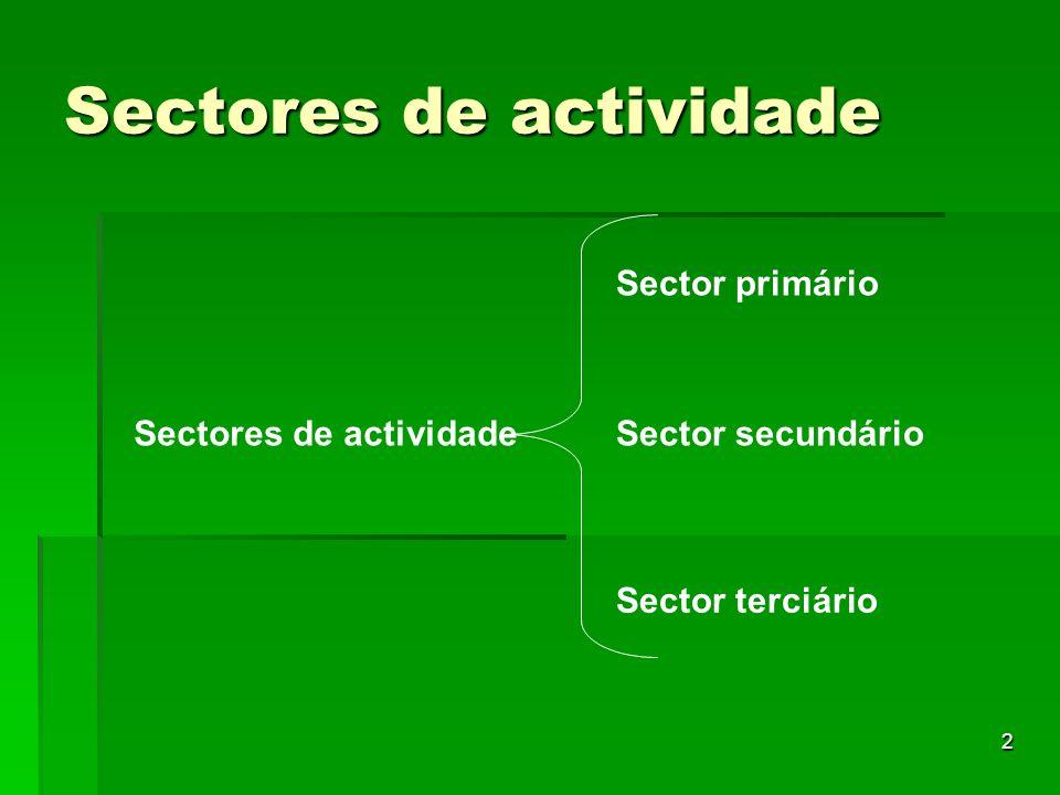 Sectores de actividade
