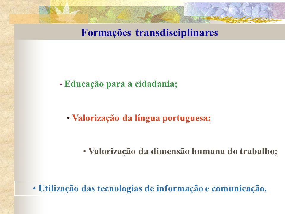 Formações transdisciplinares