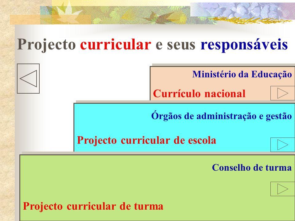 Projecto curricular e seus responsáveis