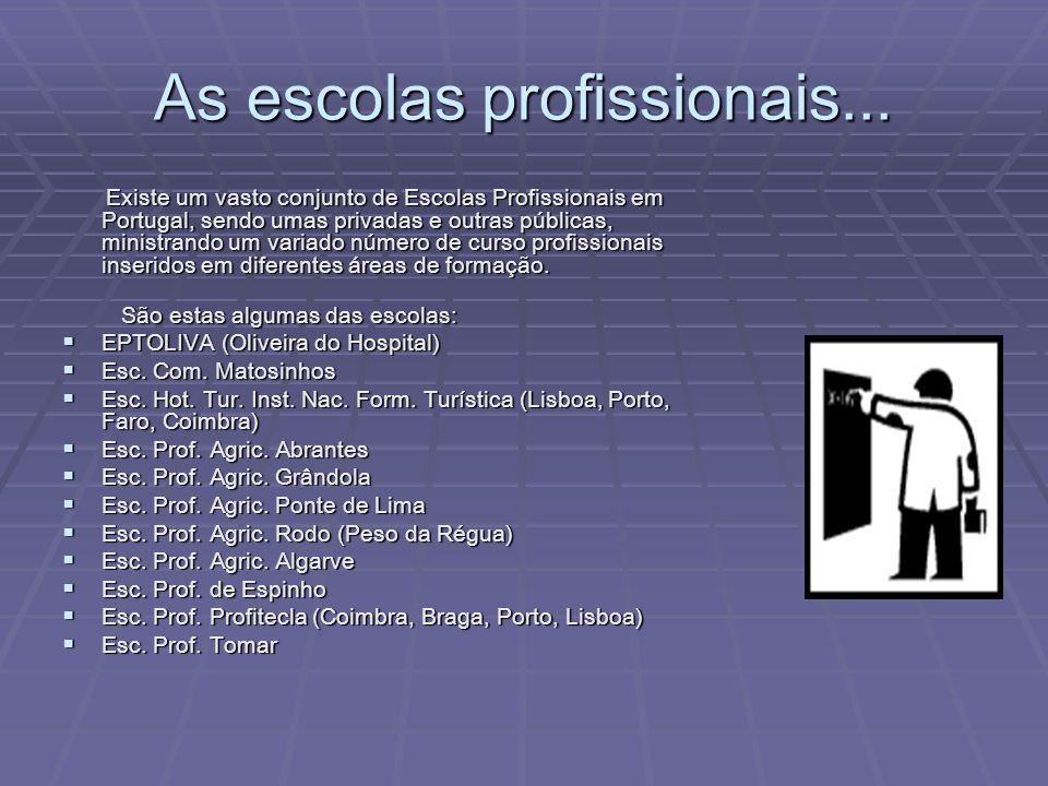As escolas profissionais...