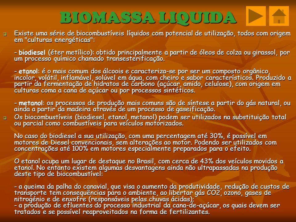 BIOMASSA LIQUIDA