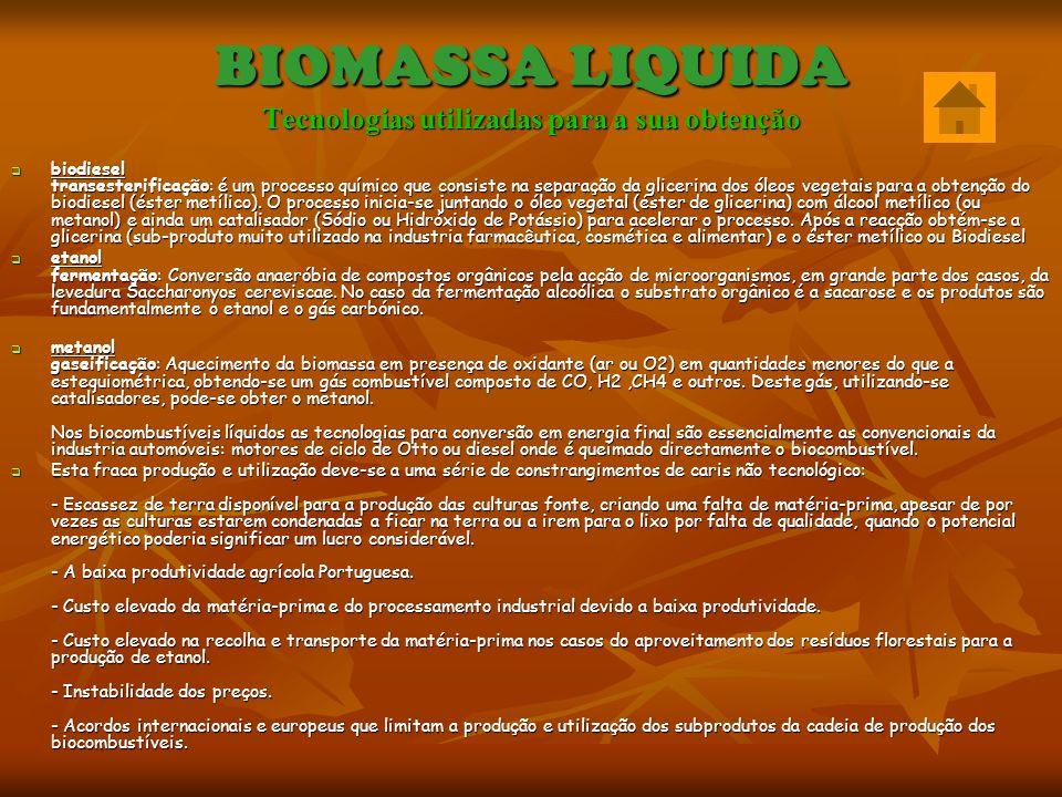 BIOMASSA LIQUIDA Tecnologias utilizadas para a sua obtenção