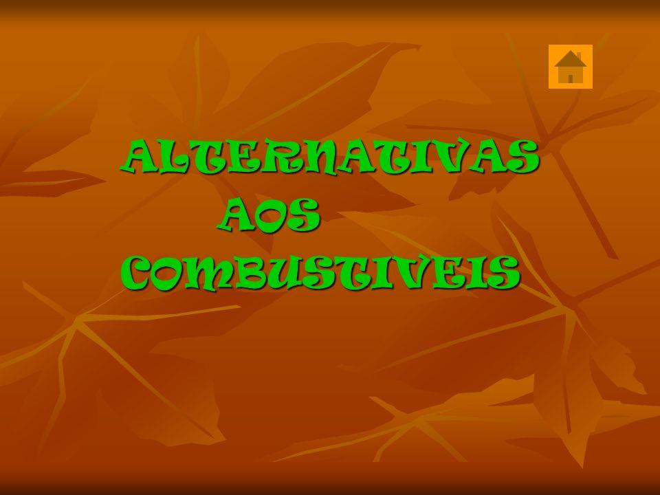 ALTERNATIVAS AOS COMBUSTIVEIS