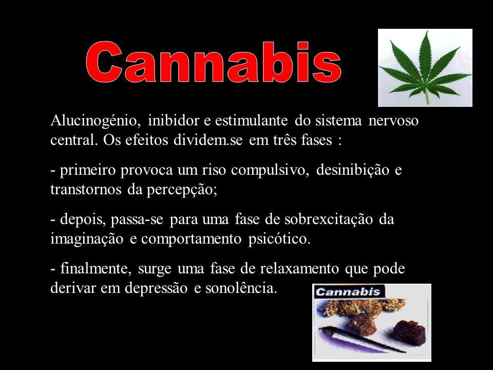Cannabis Alucinogénio, inibidor e estimulante do sistema nervoso central. Os efeitos dividem.se em três fases :