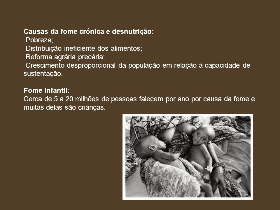 Causas da fome crónica e desnutrição: