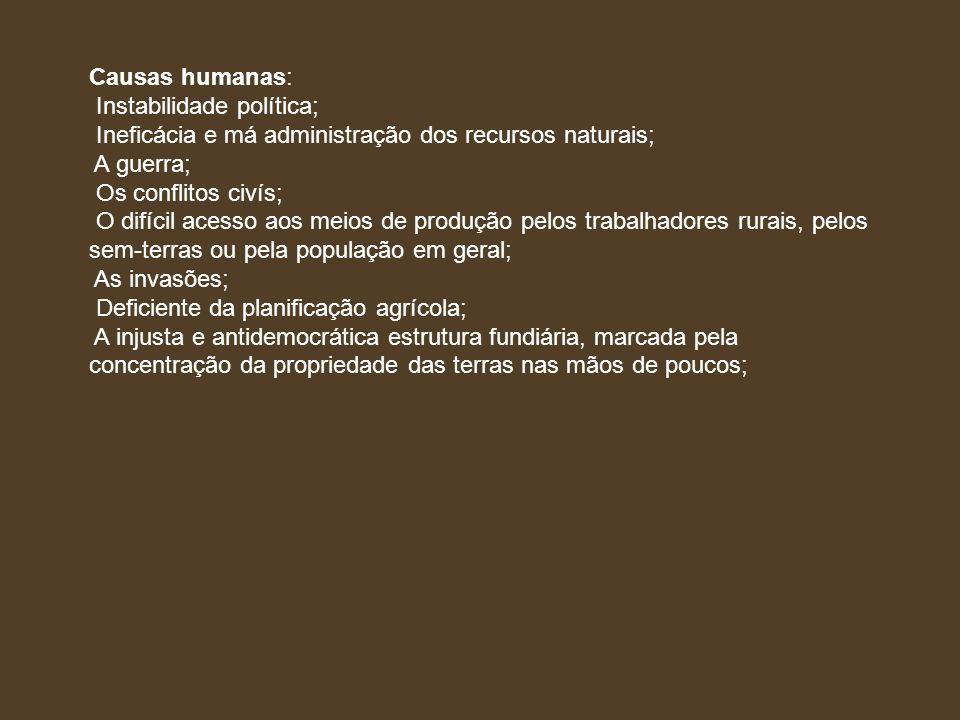 Causas humanas: Instabilidade política; Ineficácia e má administração dos recursos naturais; A guerra;