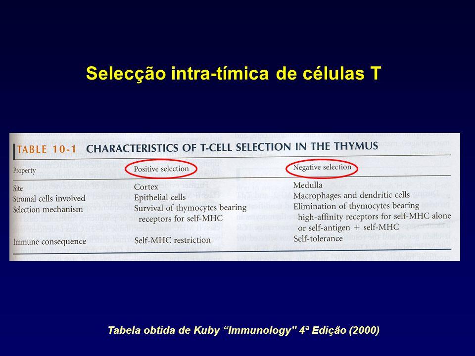Selecção intra-tímica de células T