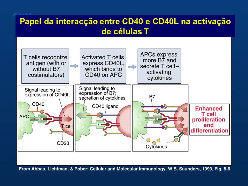 Papel da interacção entre CD40 e CD40L na activação de células T