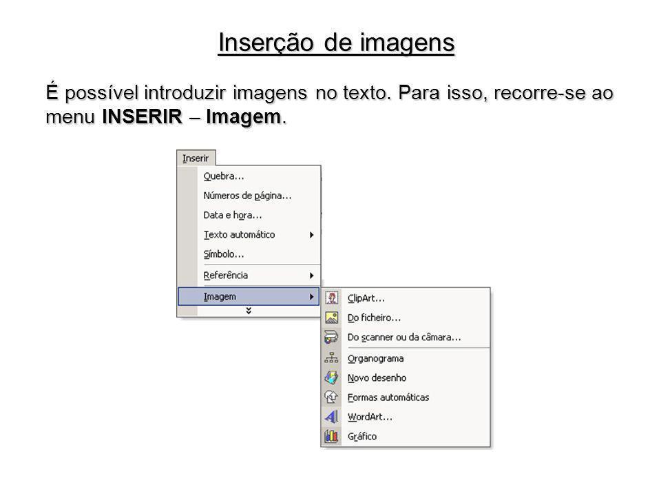 Inserção de imagens É possível introduzir imagens no texto.