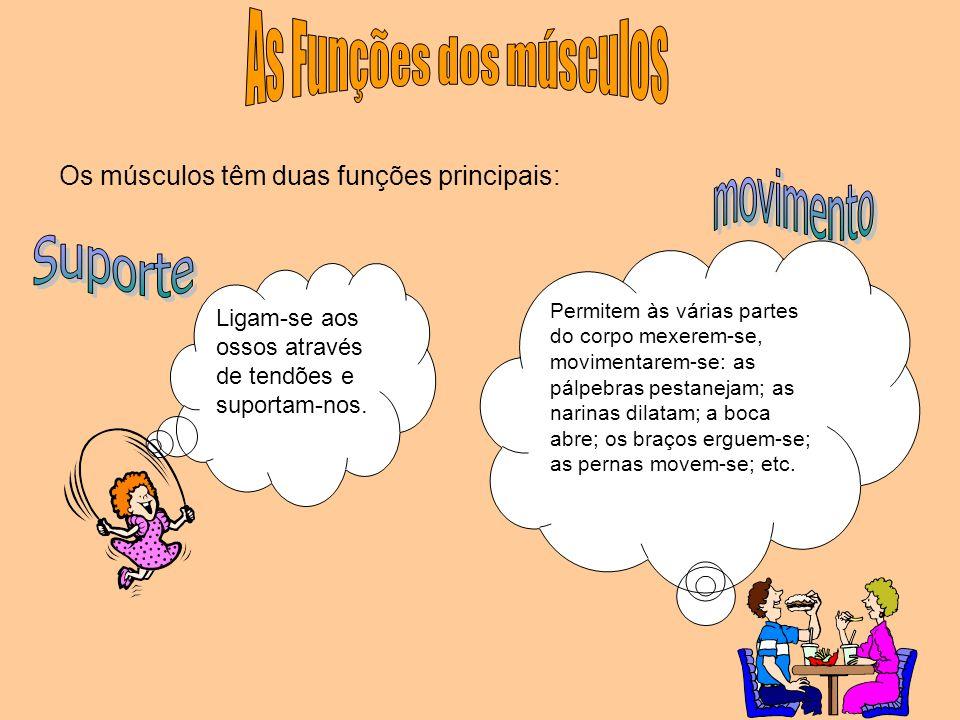 As Funções dos músculos