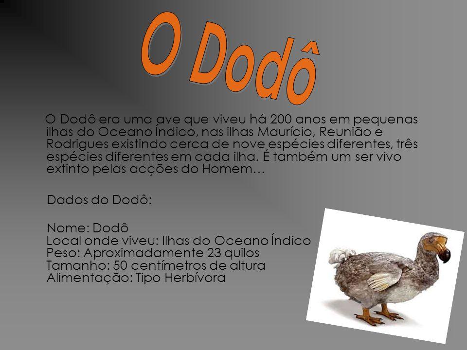 O Dodô