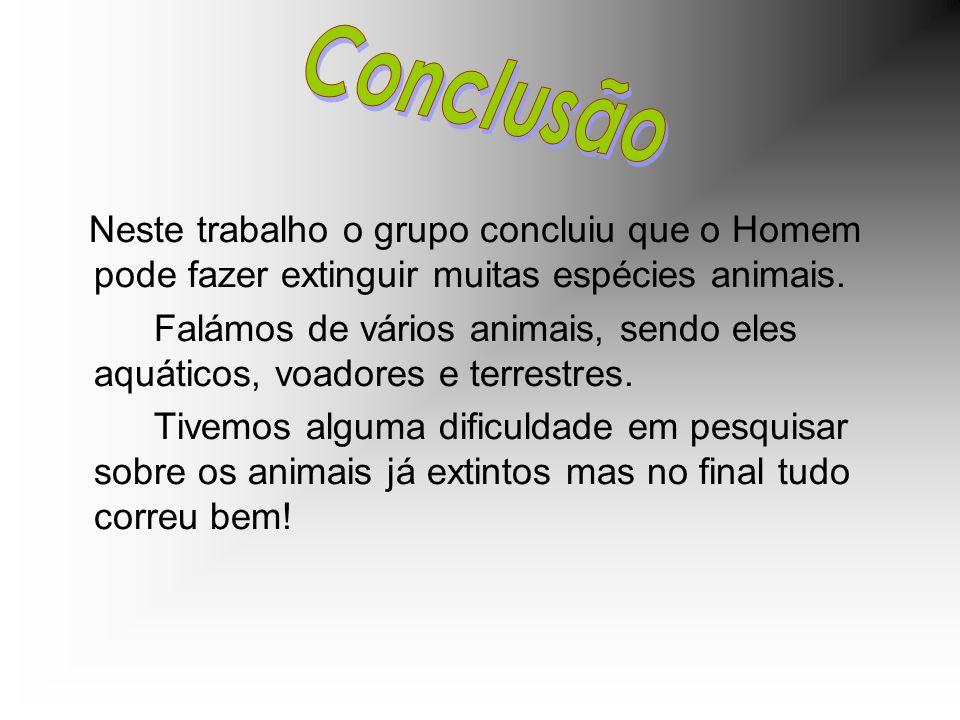 Conclusão Neste trabalho o grupo concluiu que o Homem pode fazer extinguir muitas espécies animais.