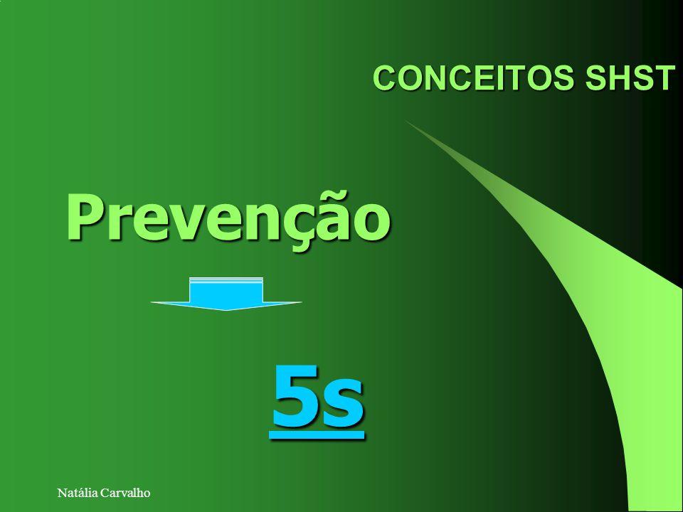 CONCEITOS SHST Prevenção 5s Natália Carvalho