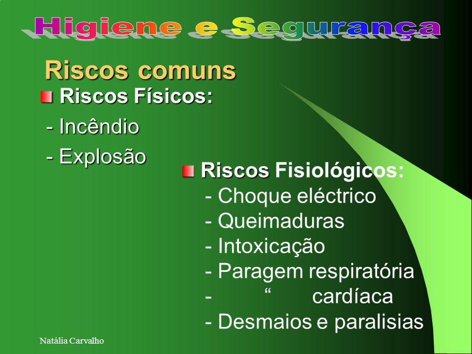 Riscos comuns Higiene e Segurança Riscos Físicos: - Incêndio