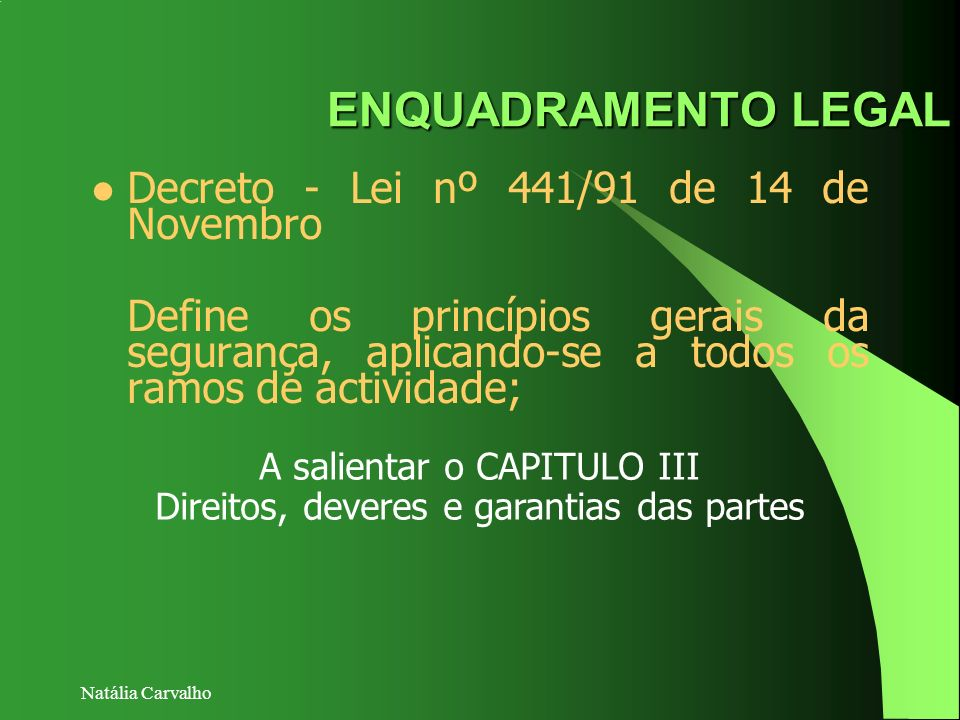 ENQUADRAMENTO LEGAL Decreto - Lei nº 441/91 de 14 de Novembro