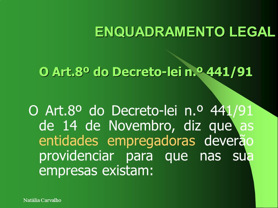 O Art.8º do Decreto-lei n.º 441/91