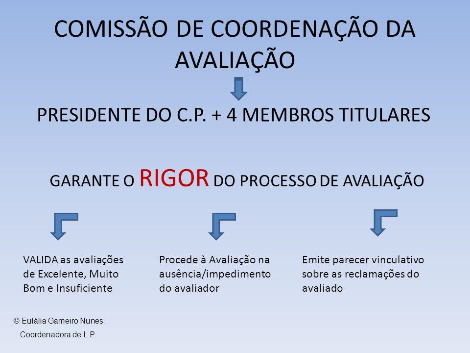 COMISSÃO DE COORDENAÇÃO DA AVALIAÇÃO