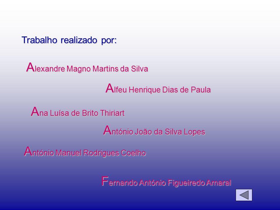 Alexandre Magno Martins da Silva