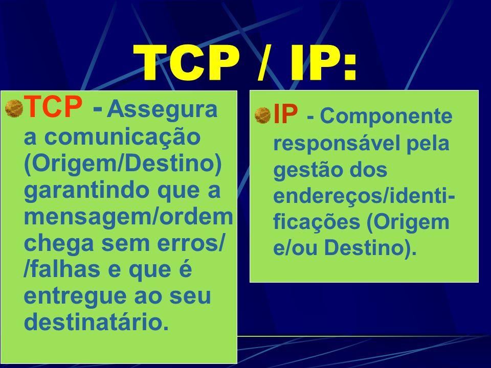 TCP / IP: