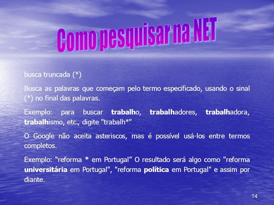 Como pesquisar na NET busca truncada (*)