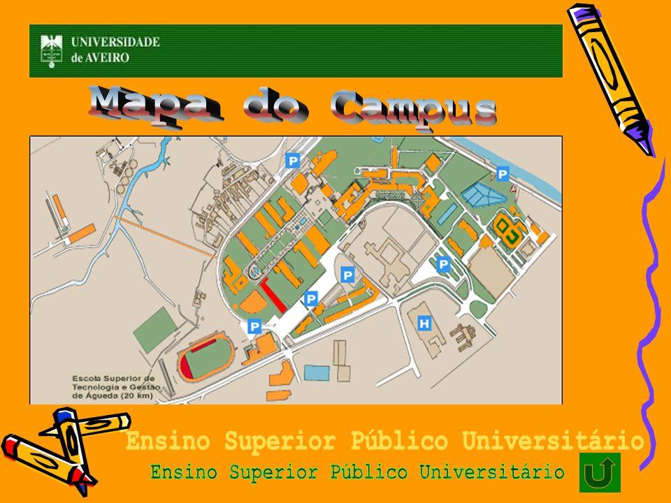 Ensino Superior Público Universitário