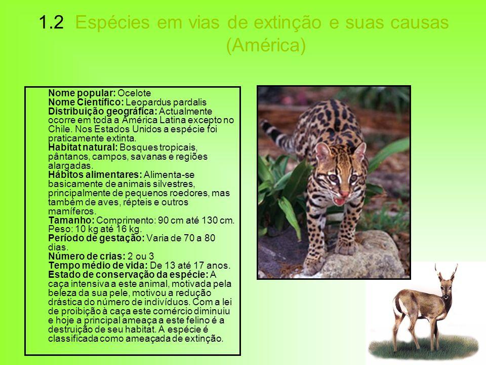 1.2 Espécies em vias de extinção e suas causas (América)