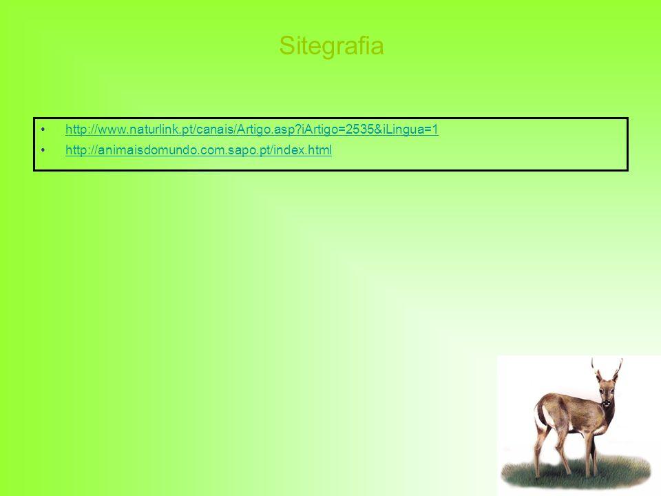 Sitegrafia http://www.naturlink.pt/canais/Artigo.asp iArtigo=2535&iLingua=1.