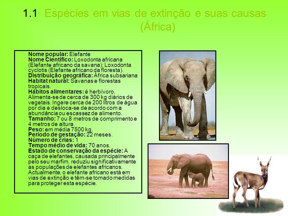 1.1 Espécies em vias de extinção e suas causas (África)