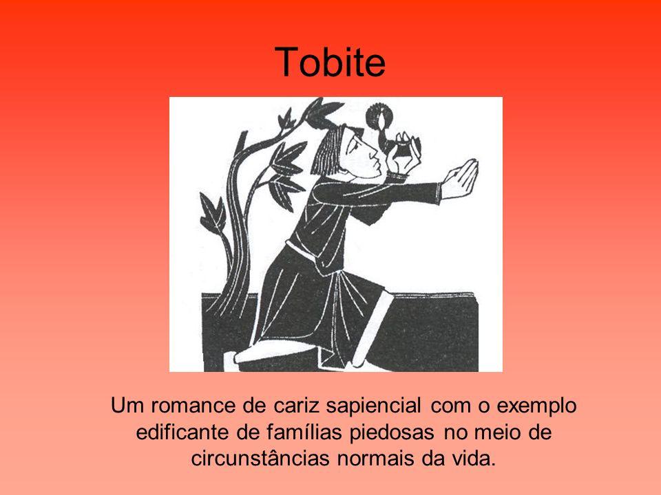 Tobite Um romance de cariz sapiencial com o exemplo edificante de famílias piedosas no meio de circunstâncias normais da vida.