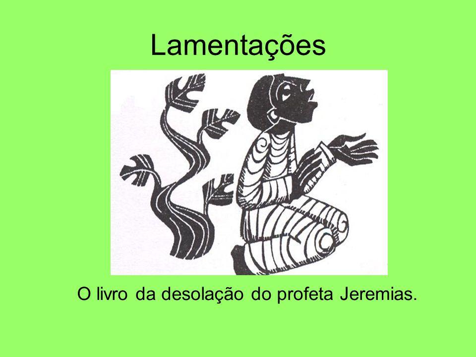 O livro da desolação do profeta Jeremias.