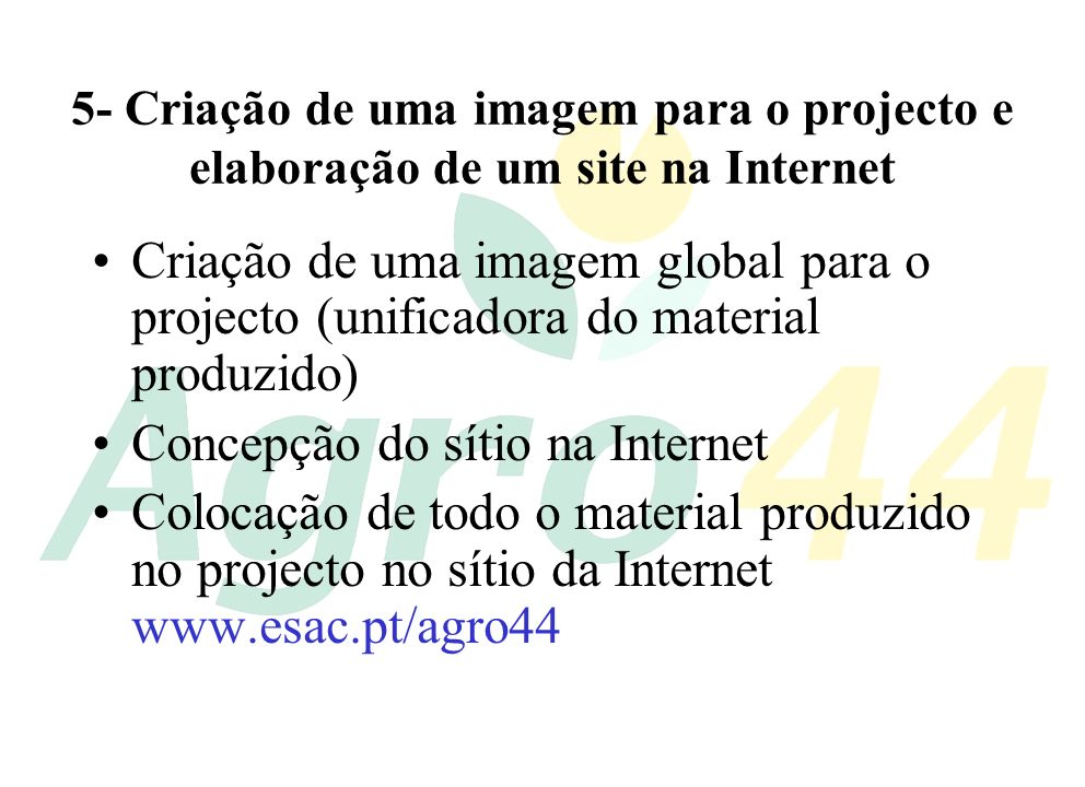 Concepção do sítio na Internet