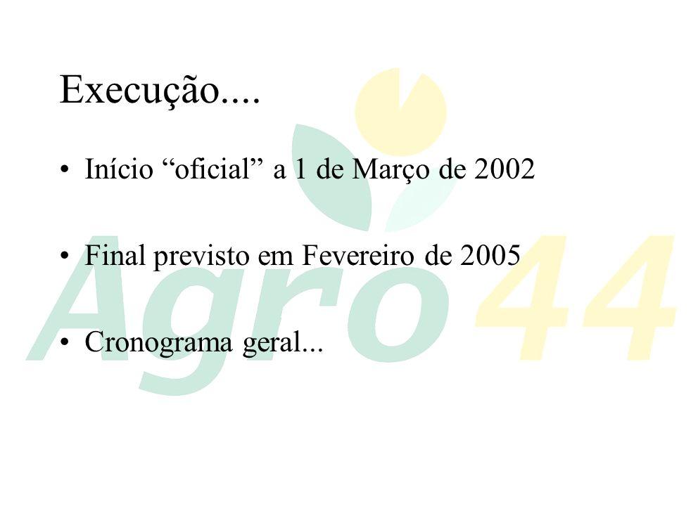 Execução.... Início oficial a 1 de Março de 2002