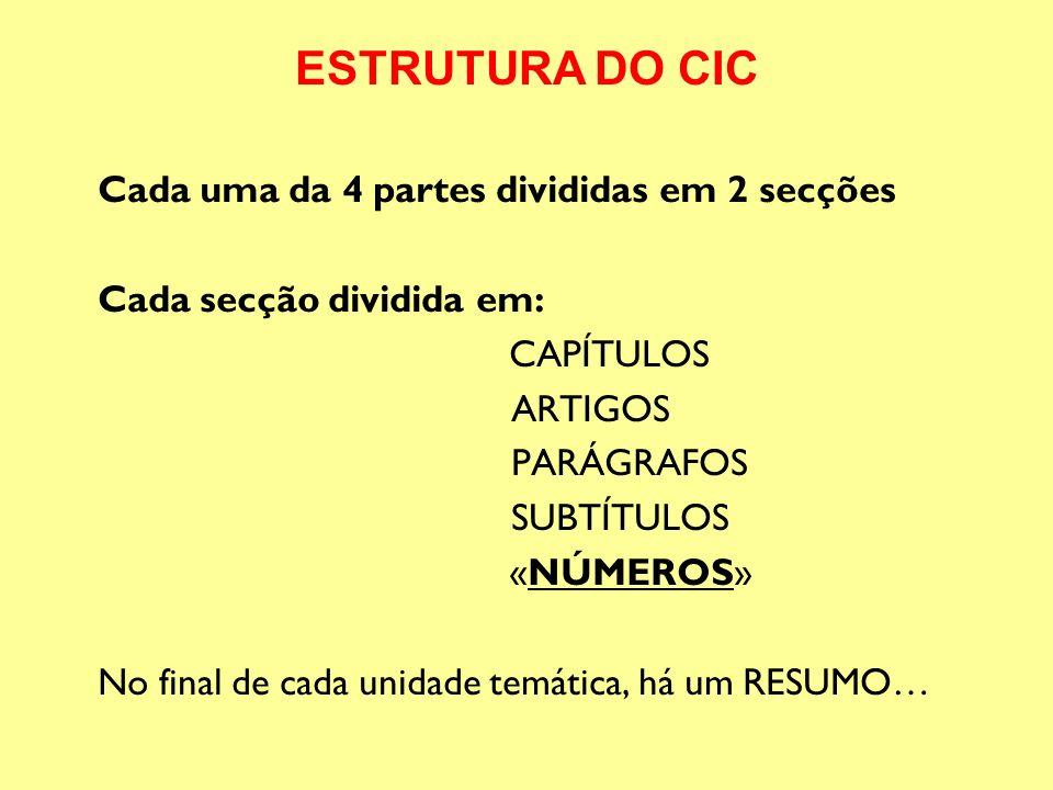 ESTRUTURA DO CIC Cada uma da 4 partes divididas em 2 secções