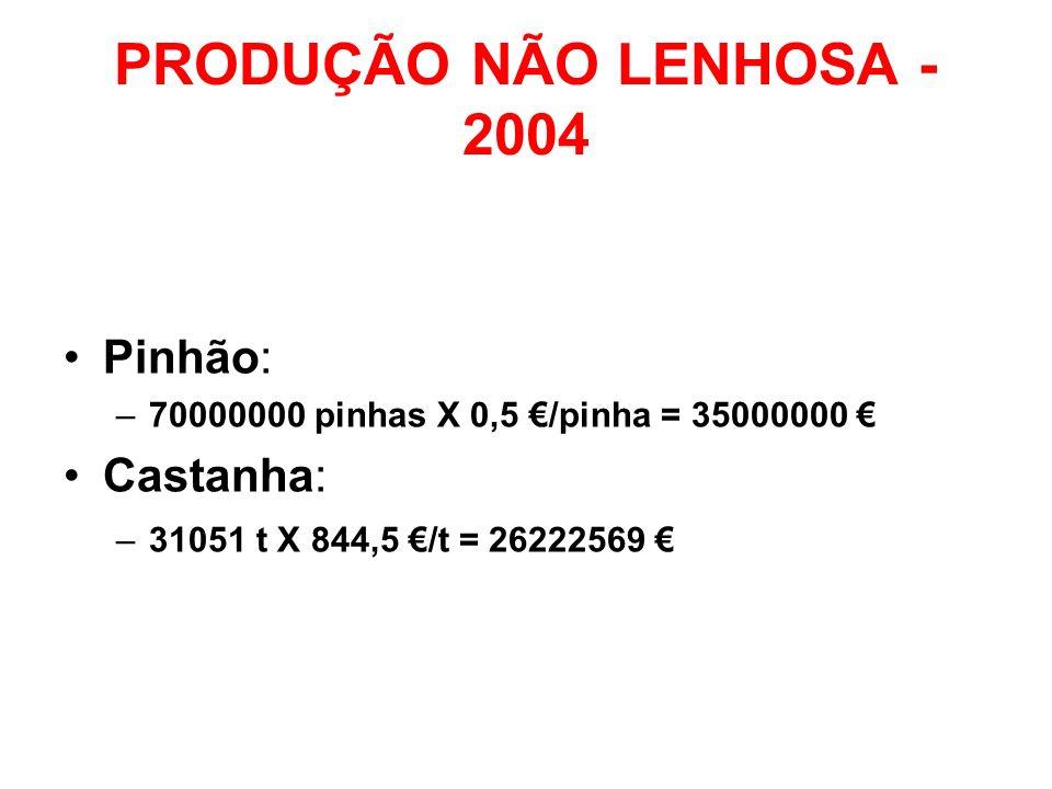 PRODUÇÃO NÃO LENHOSA - 2004 Pinhão: Castanha: