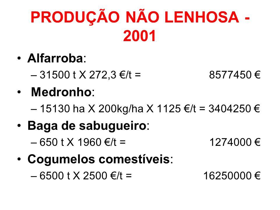 PRODUÇÃO NÃO LENHOSA - 2001 Alfarroba: Medronho: Baga de sabugueiro:
