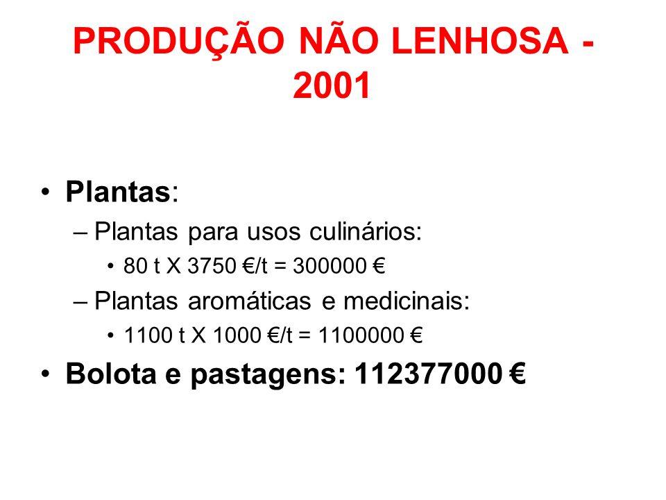 PRODUÇÃO NÃO LENHOSA - 2001 Plantas: Bolota e pastagens: 112377000 €