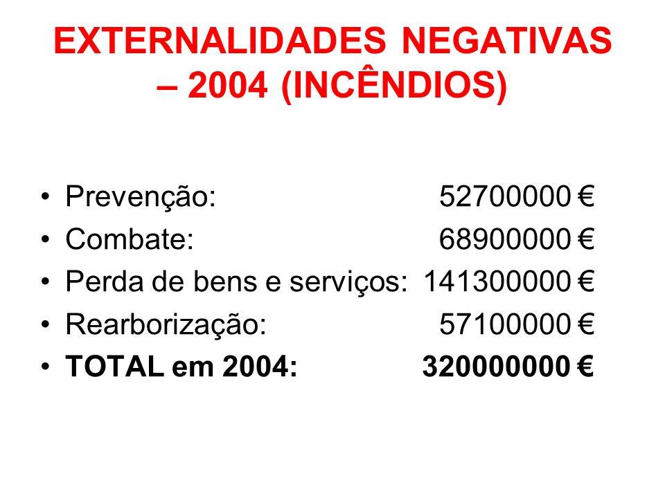 EXTERNALIDADES NEGATIVAS – 2004 (INCÊNDIOS)