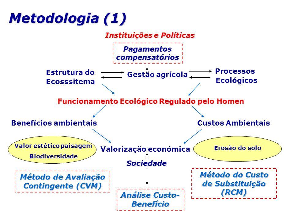 Metodologia (1) Método do Custo de Substituição (RCM)