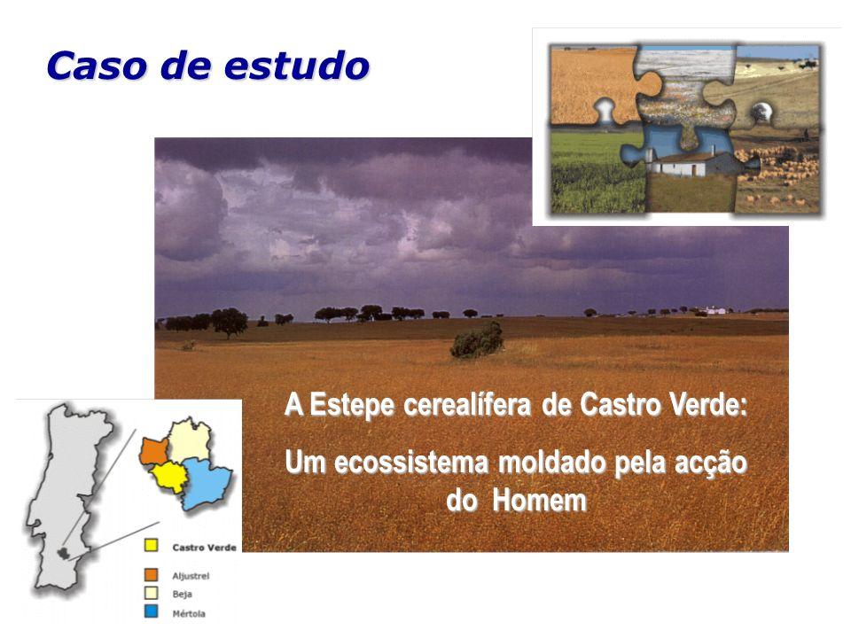 Caso de estudo A Estepe cerealífera de Castro Verde: