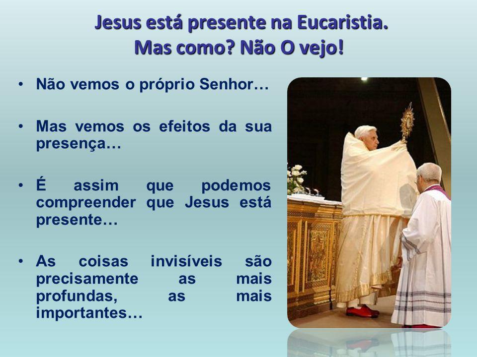 Jesus está presente na Eucaristia. Mas como Não O vejo!