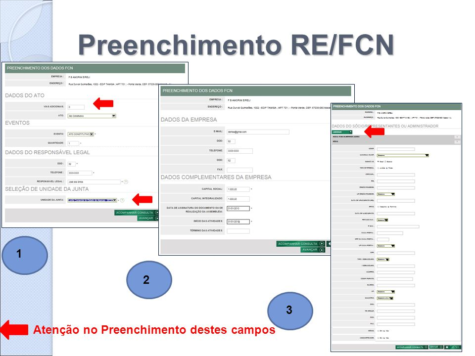 Preenchimento RE/FCN 1 2 3 Atenção no Preenchimento destes campos