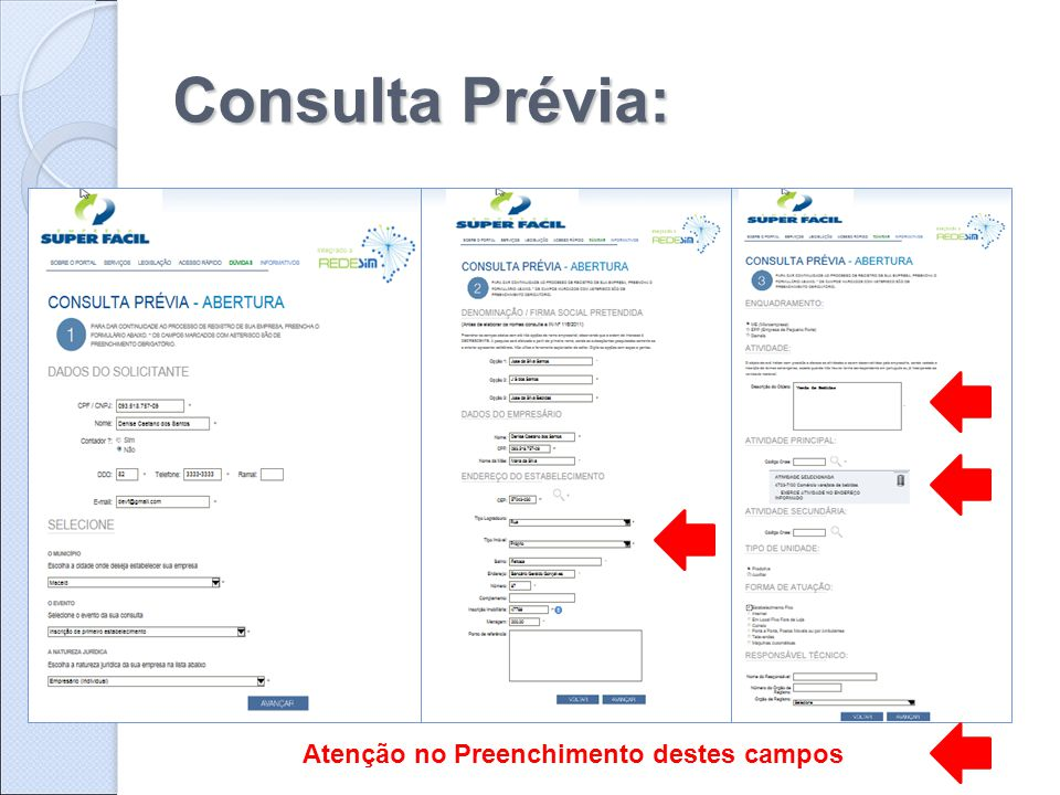 Consulta Prévia: Atenção no Preenchimento destes campos